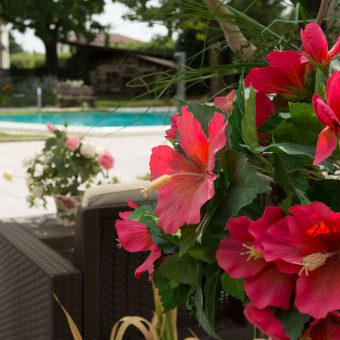 bed & breakfast marano vicentino vicenza parco